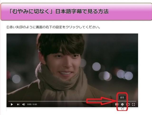 「むやみに切なく」日本語字幕で見る方法